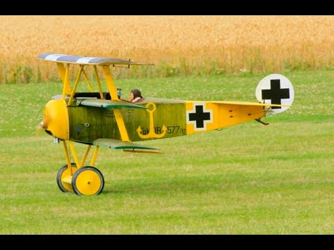 GIANT SCALE RC DAWN PATROL UK WW1 SCOUT / FIGHTERS AT WILLIS WARBIRDS FIGHTER MEET - 2015