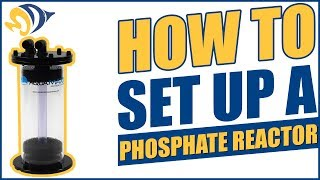 How to Set Up a Phosphate Reactor