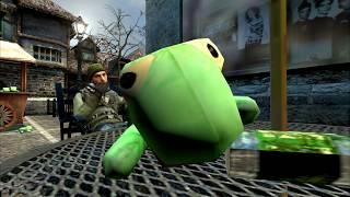 Would You Like a Turtle?