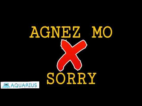 AGNEZ MO - SORRY (lyric video)