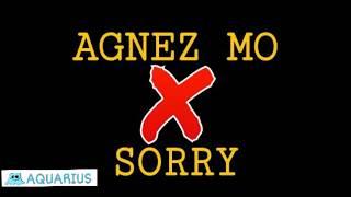 AGNEZ MO - SORRY (lyric video)