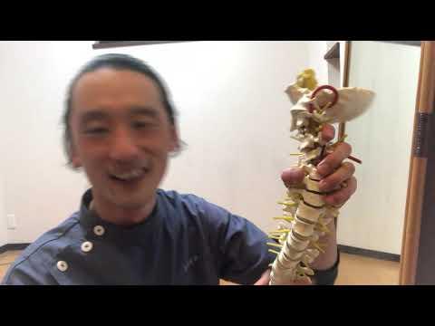 「香川 新体操 バレエ 柔軟」怪我に繋がる危険な柔軟(股関節編)