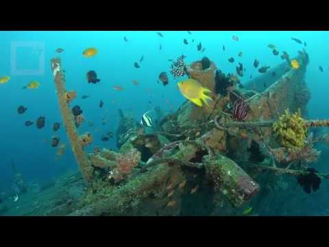 Boga wreck with