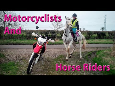 Lots of Horse Riders & Motorcyclists!