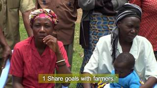 Smallholder Farmers Make Changes for Success at Market-SHEP Approach Spreading to the Whole Africa