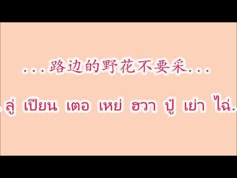 小城故事/你怎么说/甜蜜蜜/路边的野花不要采/采槟榔
