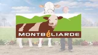 Présentation OS Montbéliarde
