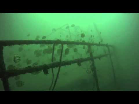 Raymarine DragonFly in Action - Pittwater Wreck in Australia