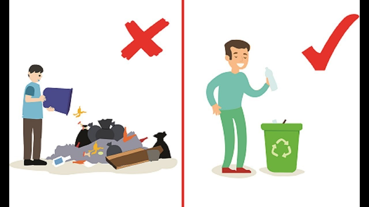 What will happen if we throw waste anywhere - YouTube