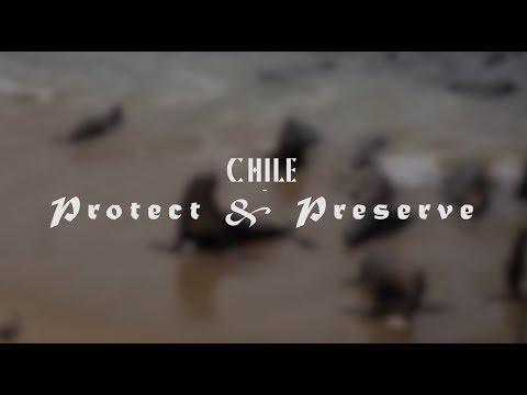 Chile - Protect & Preserve
