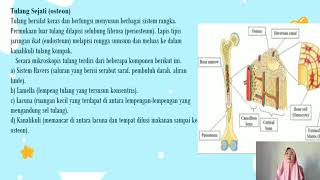 Berisi penjelasan materi praktikum patologi anatomi sistema urinarius dan kelenjar mammae bagi mahas.