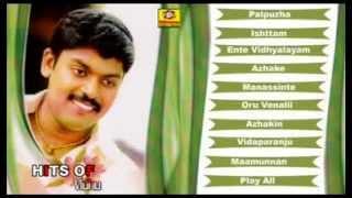 Hits Of Vidhu Prathap Vol-2 | Romantic Album | Malayalam
