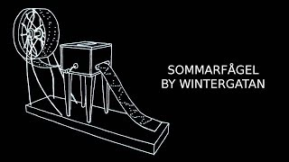 Wintergatan - Sommarfågel