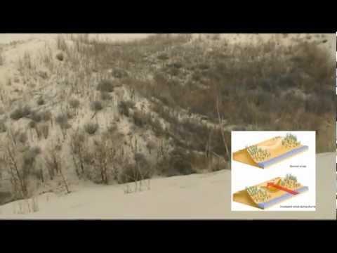 Geographic Journey: Eolian Landscape