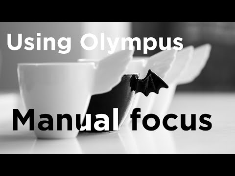 Manual Focus Photography Using Olympus Episode 12