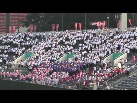 高校野球選手権埼玉大会