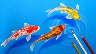 How I draw Koi Fishes in the pond-3D Drawing tutorial
