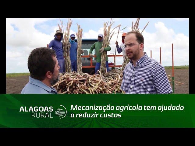 Plantio mecanizado reduz  em 30% os custos de renovação dos canaviais