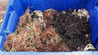 How to Make a Worm Bin | Easy DIY Worm Farm
