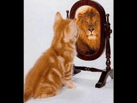 How to gain back confidence in yourself