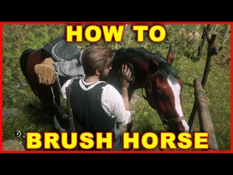 Red Dead Online: How to Brush Your Horse
