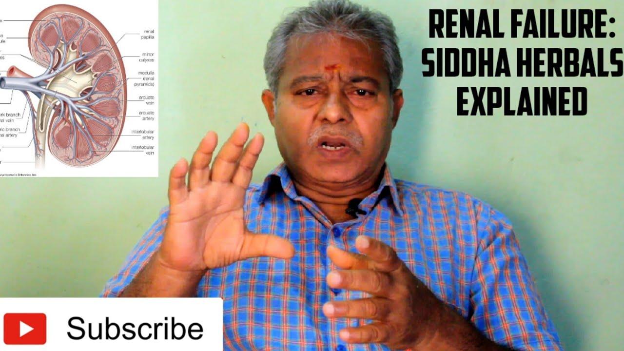 Siddha Herbals Used In Renal Failure Kidney Failure Explained In Tamil Marunthu Venduma Youtube
