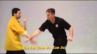 Video Preview - Shaolin Black Flag - 18 Lohan Seperating Hands Part 2 download MP3, 3GP, MP4, WEBM, AVI, FLV November 2017