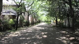 南大沢駅から小山内裏公園