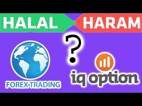 IQ option Forex Trading Halal ya Haram Complete  Information urdu/hindi only on abdulrauf tipsl