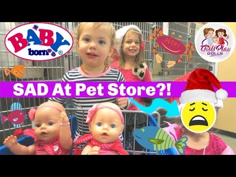 👶🏼👶🏼BABY BORN TWINS MISS Their PUPPY! 😞 Pet Store Outing! 🐶  Day 7-Baby Born Advent Calendar🎄