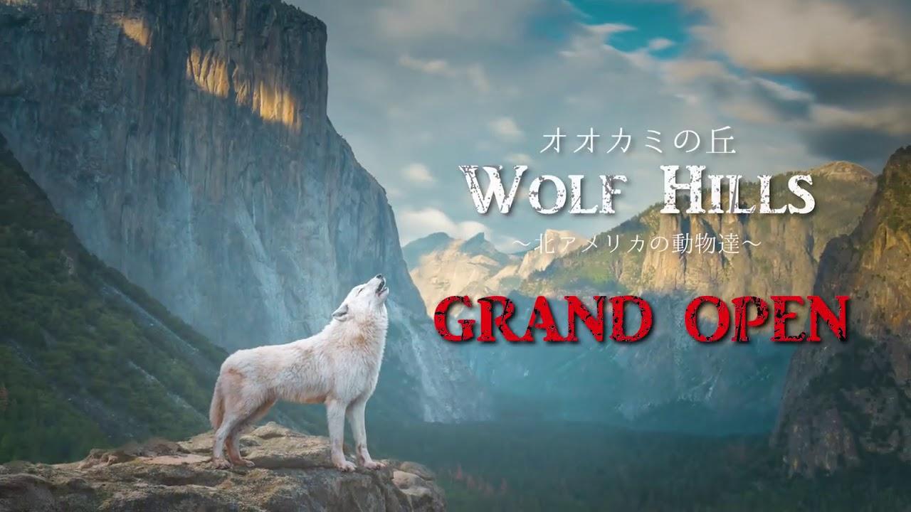 那須どうぶつ王国 オオカミの丘オープン