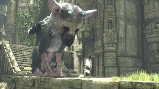 PC Fans Are Begging For The Last Guardian