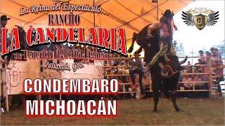 Rancho La Candelaria (FFF) en Condémbaro, Michoacán 2015