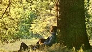ラヴ ジョン・レノン Love Jhon Lennon Love is real, real is love 愛...