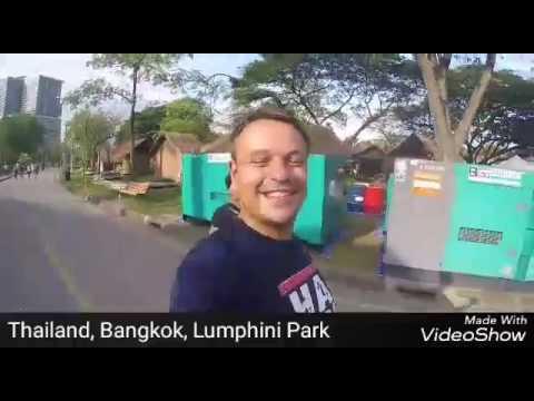 Vlog 22 - Von Thailand nach Myanmar: YANGON, HSIPAW (Ayutthaya, Temples, Hsipaw Villages)