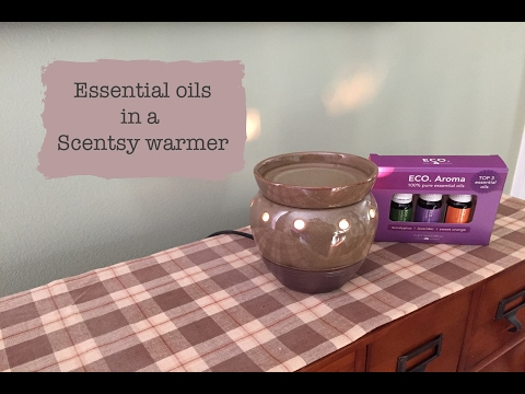 essential-oils-in-a-scentsy-warmer!