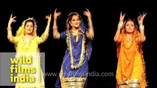 Dogri folk dance by women from Jammu