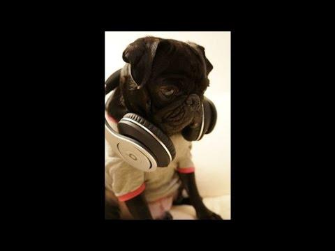 DJ FREDDY G Disco MIx