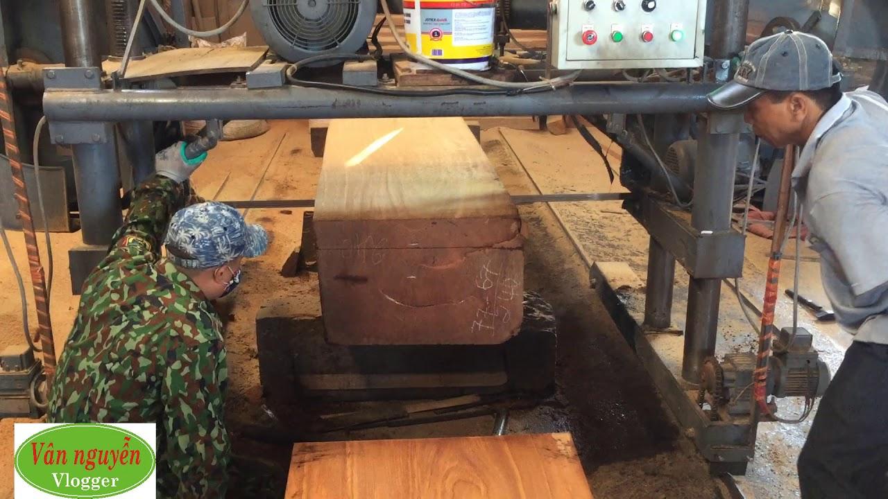 Chất gỗ gõ đỏ đỉnh cao của gỗ gõ đỏ Pachi - Chuyên mục hiểu biết về các loại gỗ trên thị trường