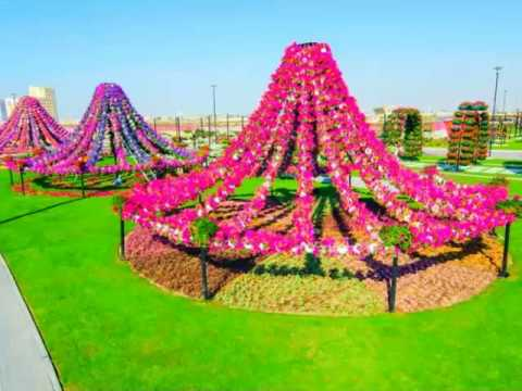 Most Amazing Flower Garden of The World YouTube