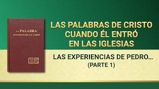La Palabra de Dios | Las experiencias de Pedro: su conocimiento del castigo y del juicio (Parte 1)