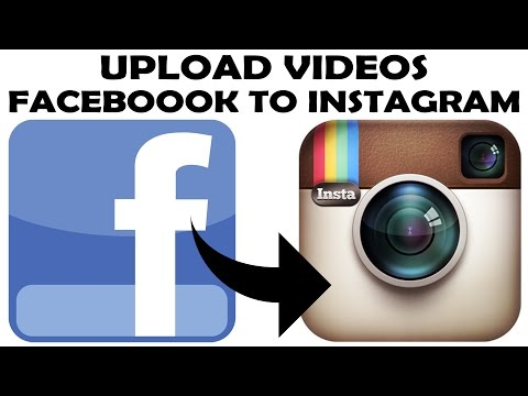 How to download instagram videos on mac