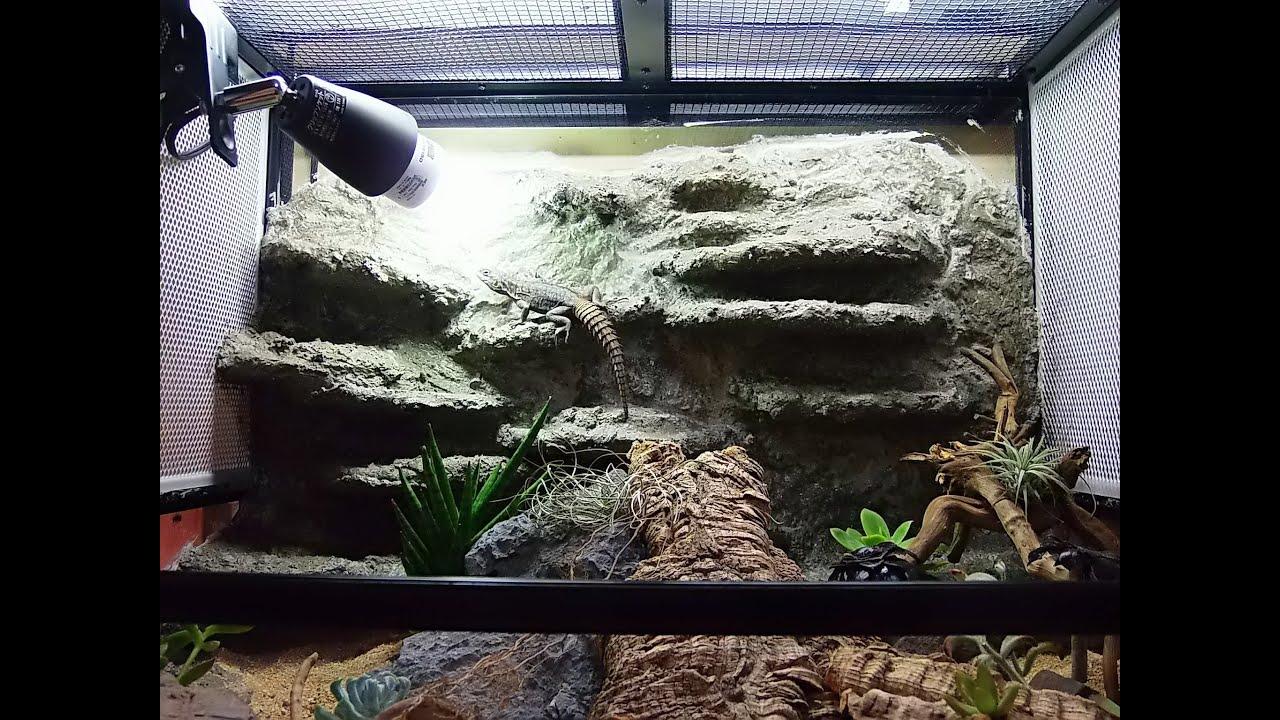 Making Rock Background For Dry Vivarium Hd Youtube