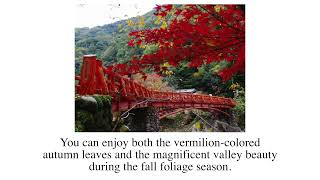 Recommended spots for autumn in Kansai
