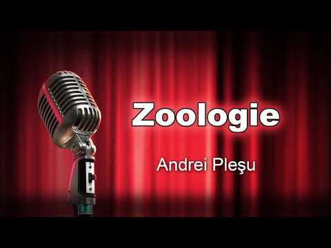 Zoologie, Andrei Plesu