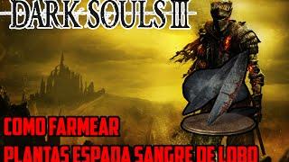 [Dark Souls 3] Como farmear Plantas Espada Sangre de Lobo Offline (Sabuesos de Farron/Watchdogs)