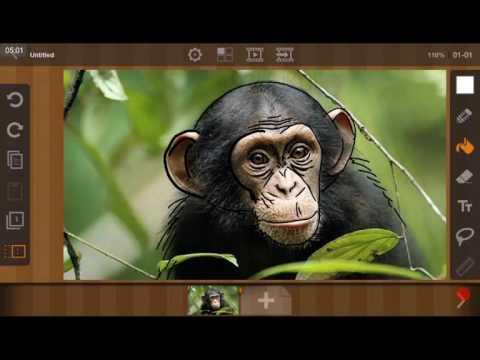 FlipaClip tutorial, как загрузить фото и перерисовать фото в программе