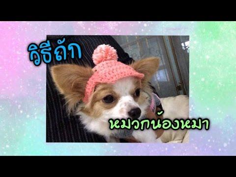 วิธีถักหมวกน้องหมา (Crochet dog hat)