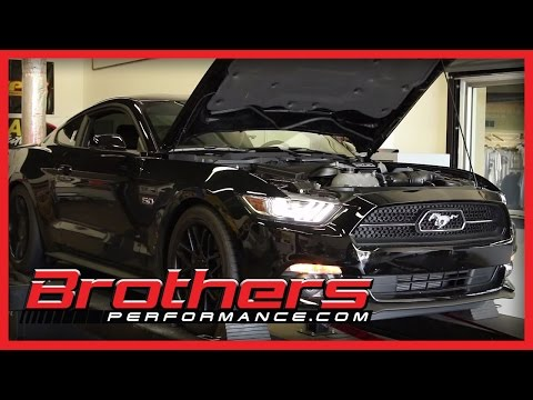 2015 Mustang GT 5.0 Dyno Test - All Stock At BrothersPerformance.com Deland Fl