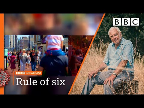 'Rule of six' comes into effect & Attenborough's extinction warning @BBC News LIVE on iPlayer BBC